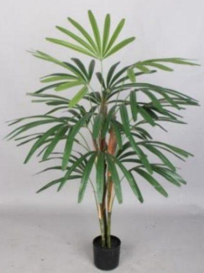 palmera artificial de Rhapis