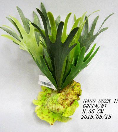 cactus-cuerno-de-alce-gpib60065