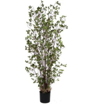arbusto-hoja-chica-182cm-2471