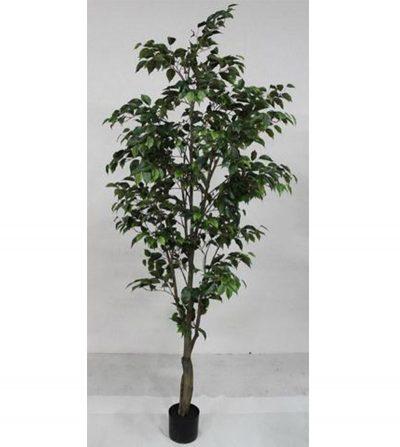arbol-ficus-hojas-chicas-210cm-g377-0066-7-pt
