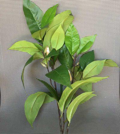 rama-magnolia-104cm-ym08019tv1281-r109-g001mx