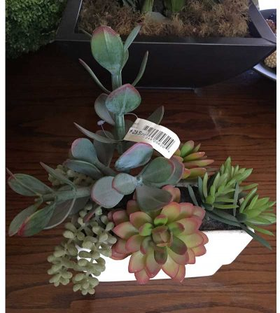 arreglo-cactus-surtido-cactus10