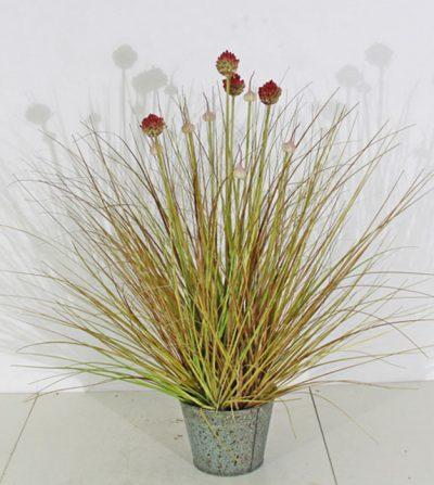 pasto-cebolla-con-florencia-71cm-r-beg-2292