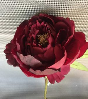 45cm-peonia-single-c-hojas-brandy