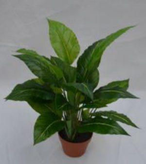 Aspidistra UV | Planta Artificiales | Corel Ltda.