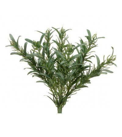 Pasto Rosemary 27cm PBH980-GR