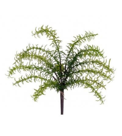 pasto-tomillo-verde-50cm-pbt735-gr