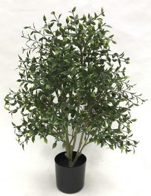 arbusto-boxwood-76cm-377-0420