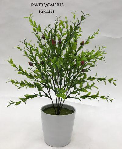 ramo-boj-con-fruto-rojo-377-0450