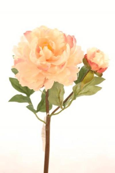 peonia-con-boton-rosa-clara-54cm-l18521lpk