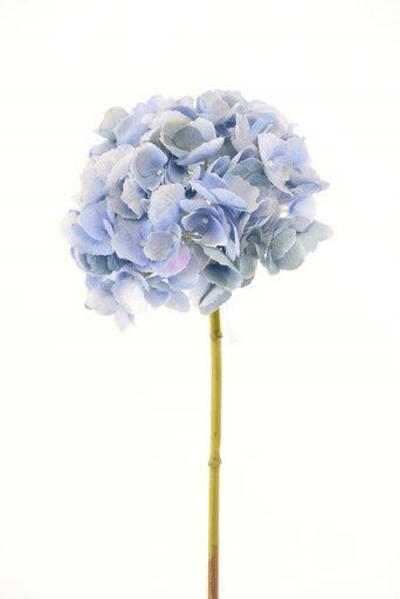 hortensia-celeste-52cm-l18507bl