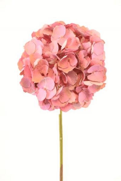hortensia-rosada-50cm-l18508-pk