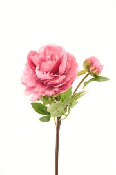 peonia-con-boton-rosa-oscuro-54cm-l15017dpk