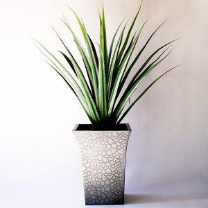 yuca-bush-80-cms-g450-0005-pt