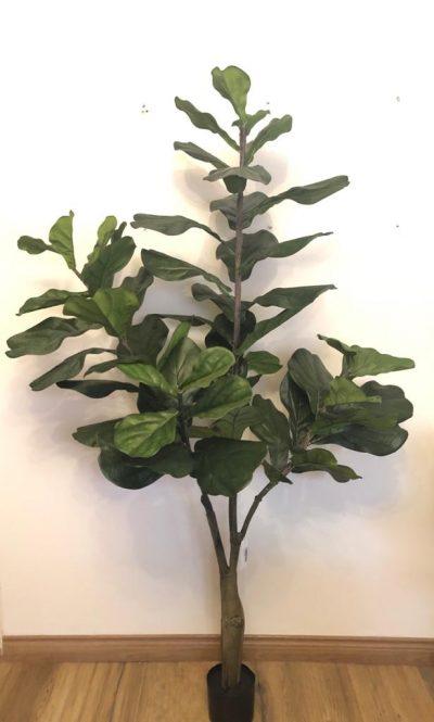 arbol-fidel-180cm-g377-0103-6