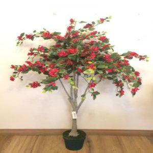 arbol-bouganvillea-150cm-446-0950-pt