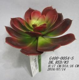 suculenta-roja-17cm-g400-0054-s