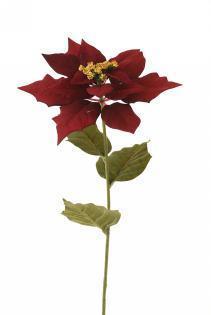 flor-de-inca-poinsettia-75cm-l20451-rd