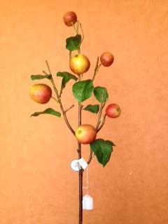 vara-de-manzanas-36-95234