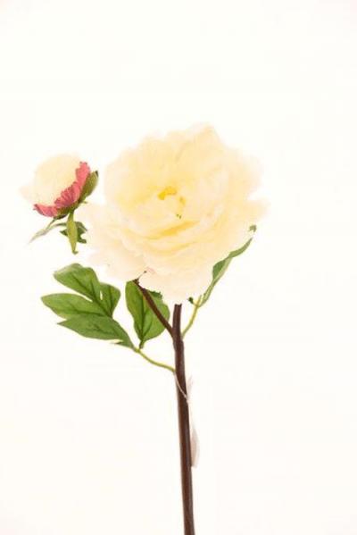 peonia-con-boton-crema-rosa-54cm-l15017-crpk