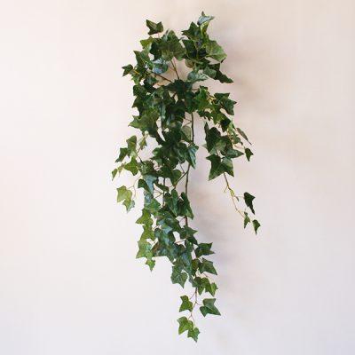 hiedra-english-ivy-hanging-bush-89cm-g377-0087