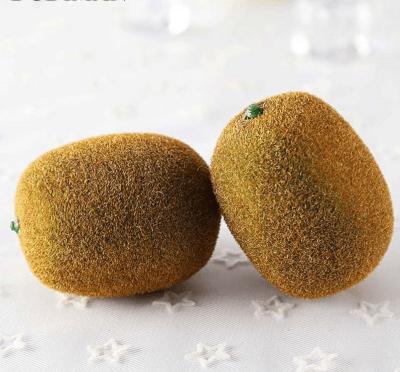 kiwi-grande-kw01