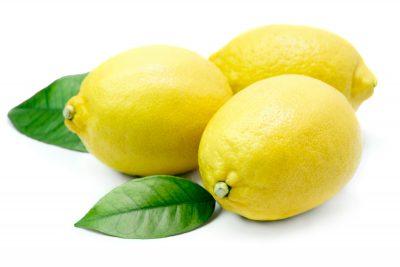 limones-Artificial-lim02