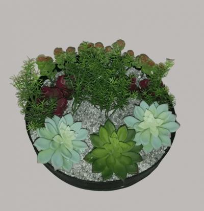 Arreglo de Cactus Con Macetero Redondo 1