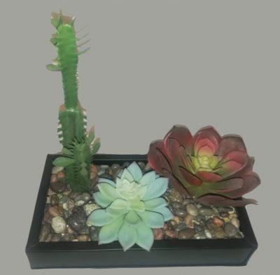 arreglo de cactus alto chico 2