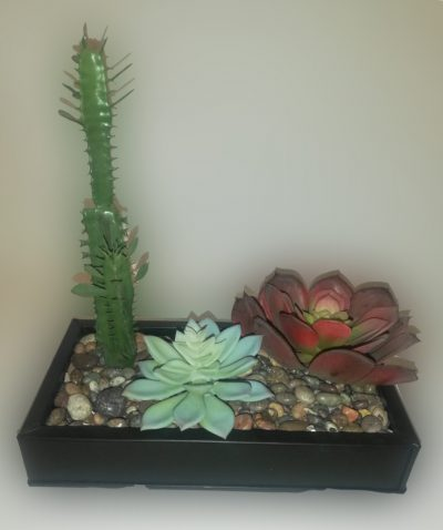 arreglo de cactus alto chico