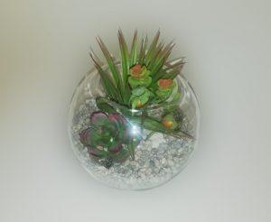 arreglo de cactus chico