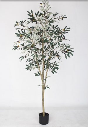 Arbol de Olivo 180cm G377-0041-6-PL